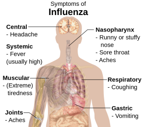 1024px-symptoms_of_influenza-svg